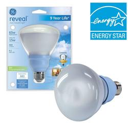 GE 15W (65W) BR30 Compact Fluorescent Flood Light Bulb