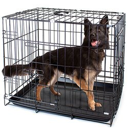 """Folding Metal Pet Crate with Removable Liner by Weebo Pets (XL - 42"""""""" x 28"""""""" x 30"""""""" Dual Door)"""" 1253224"""