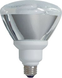 GE Lighting 26 Watt Energy Smart Outdoor Floodlight PAR38 Light
