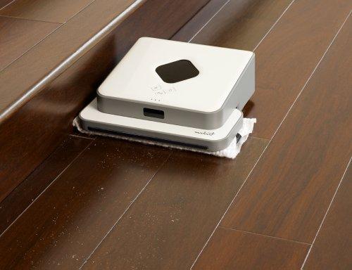 Mint Hard Floor Cleaner 4200