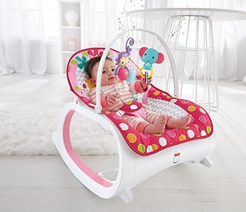 Fisher Price Infant To Toddler Rocker Flowery Chevron