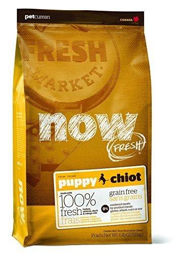 Now Fresh Grain Free Puppy Recipe Dry Dog Food