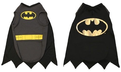 DC Comics Halloween Batman Dog Costume - Black - SizeS ...  sc 1 st  Blinq & DC Comics Halloween Batman Dog Costume - Black - Size:S - Check Back ...