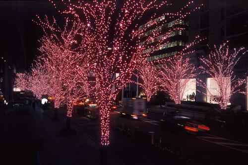 Wonder Lights String Of 100 Led Solar Ed Fairy Red 17m