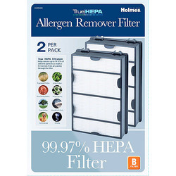 Holmes Bionaire 2-Pk HEPA-type Airflow Systems Filter (HAPF600D-U2) 385322