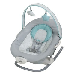 Graco Baby's 2-in-1 Duet Sway Swing with Portable Rocker - Skye 2069647