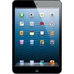 Apple iPad mini Tablet 16GB WiFi - Slate Black (MD528LL/A) 115379