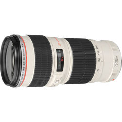 Canon EF 70-200mm f/4L USM Telephoto Zoom Lens (2578A002)